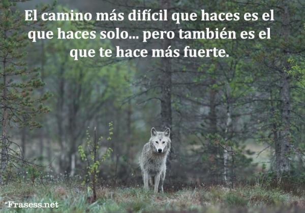 Frases de lobos - El camino más difícil que haces es el que tomas estando solo... pero como bien sabe el lobo, es también el que te hace más fuerte.