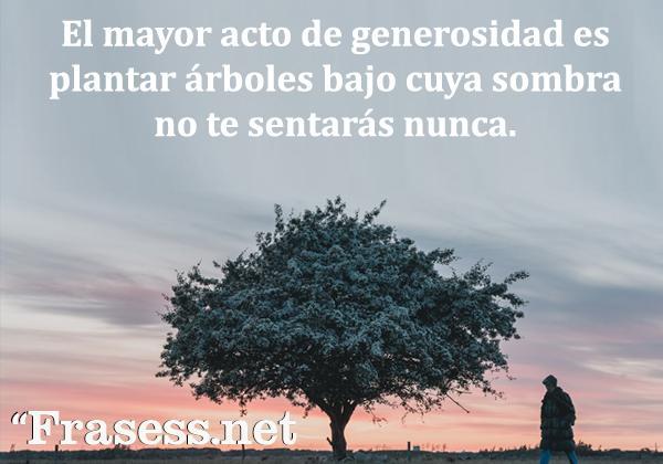Frases de generosidad - El mayor acto de generosidad es plantar árboles bajo cuya sombra no te sentarás nunca.