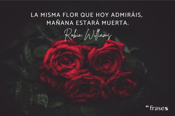 Frases de Robin Williams - La misma flor que hoy admiráis, mañana estará muerta.