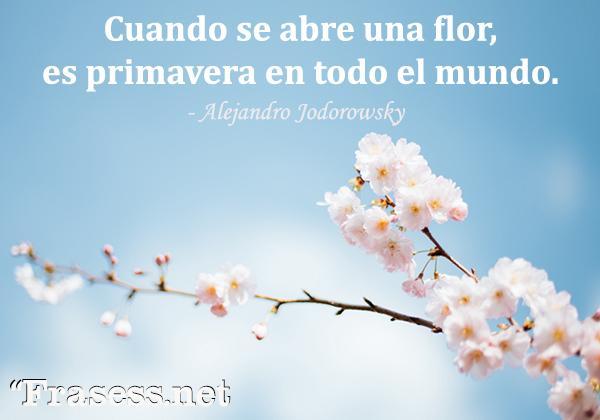 Frases de la primavera - Cuando se abre una flor, es primavera en todo el mundo.