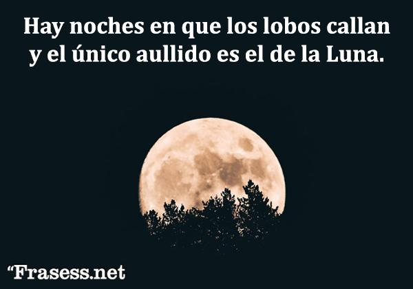 Frases de terror - Hay noches en que los lobos callan y el único aullido es el de la Luna.