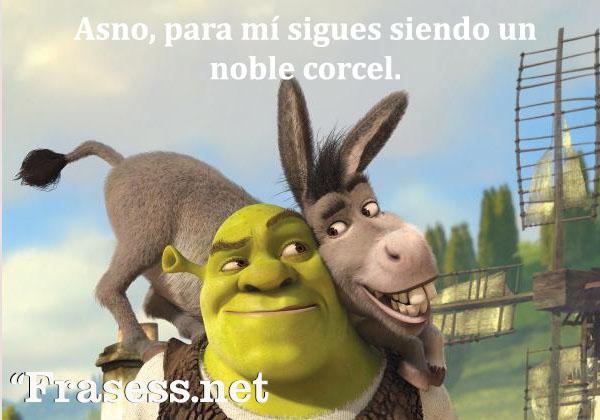 Frases de Shrek - Asno, para mí sigues siendo un noble corcel.
