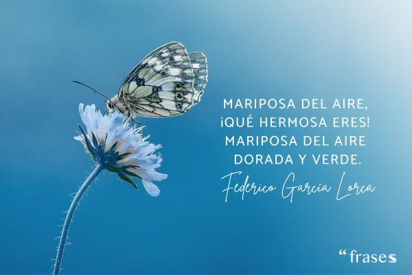 Poemas cortos de la vida - Mariposa del aire, ¡qué hermosa eres! Mariposa del aire dorada y verde.
