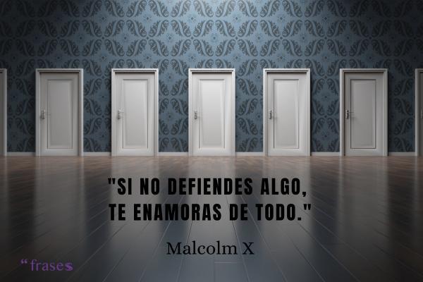 Frases de Malcolm X - Si no defiendes algo, te enamoras de todo.