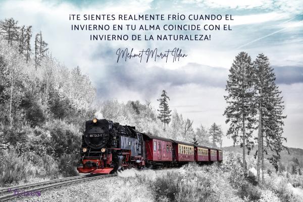 Frases de frío - ¡Te sientes realmente frío cuando el invierno en tu alma coincide con el invierno de la naturaleza!