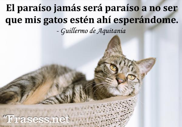 Frases de gatos - El paraíso jamás será paraíso a no ser que mis gatos estén ahí esperándome.