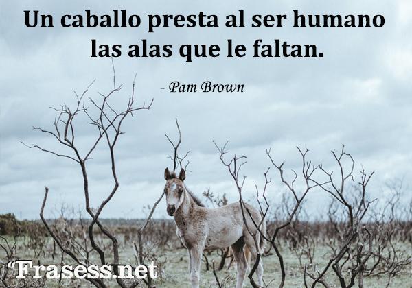 Frases de caballos - Un caballo presta al ser humano las alas que le faltan.