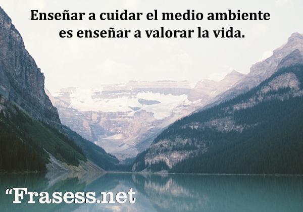 Frases del medio ambiente - Enseñar a cuidar el medio ambiente es enseñar a valorar la vida.