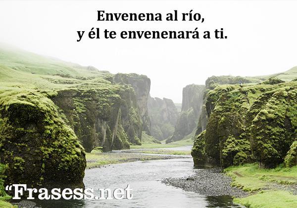 Frases del medio ambiente - Envenena al río, y él te envenenará a ti.