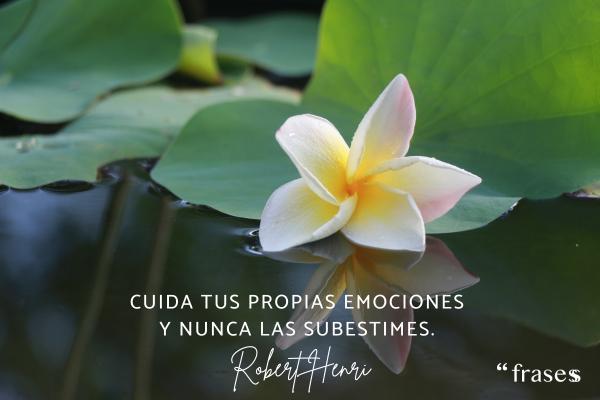 Frases de inteligencia emocional - Cuida tus propias emociones y nunca las subestimes.
