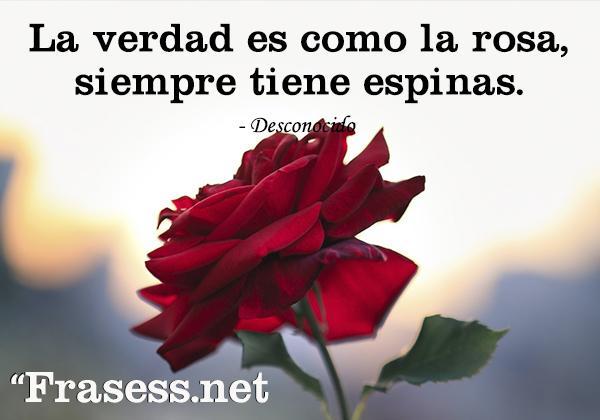 Frases de flores - La verdad es como la rosa, siempre tiene espinas.