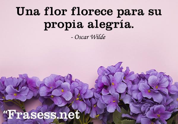 Frases de flores - Una flor florece para su propia alegría.