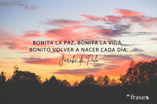 Frases de Jarabe de Palo - Bonita la paz, bonita la vida, bonito volver a nacer cada día.