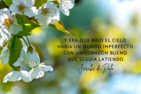 Frases de Jarabe de Palo - Y era que bajo el cielo había un mundo imperfecto con un corazón bueno que seguía latiendo.