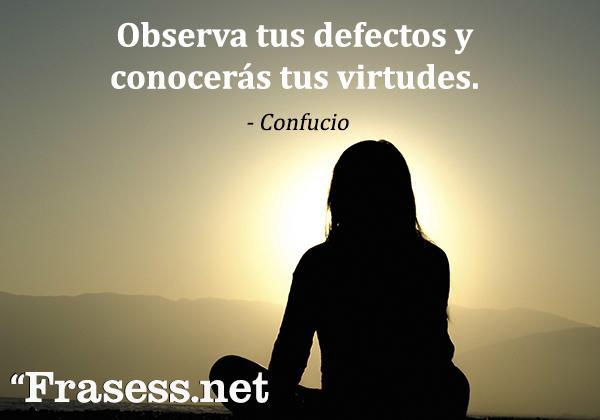 Frases sabias para reflexionar - Observa tus defectos y conocerás tus virtudes.