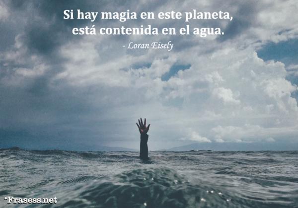 Frases para cuidar el agua - Si hay magia en este planeta, está contenida en el agua.