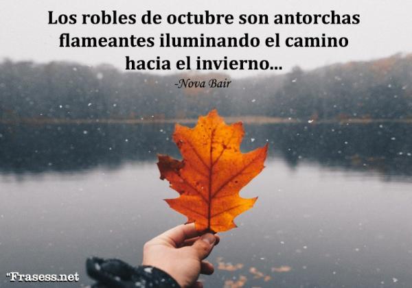 Frases de octubre - Los robles de octubre son antorchas flameantes iluminando el camino hacia el invierno.