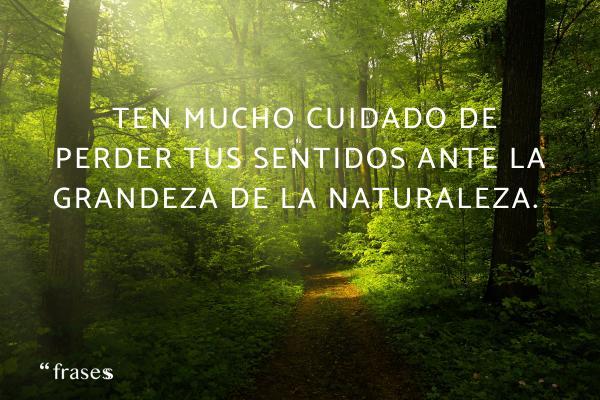 Frases de perderse - Ten mucho cuidado de perder tus sentidos ante la grandeza de la naturaleza.