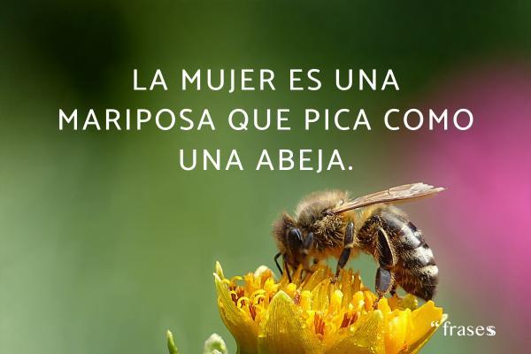 Frases de mariposas para reflexionar - La mujer es una mariposa que pica como una abeja.