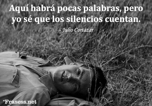 Frases de Julio Cortázar - Aquí habrá pocas palabras, pero yo sé que los silencios cuentan.