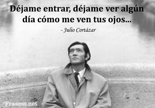 Frases de Julio Cortázar - Déjame entrar, déjame ver algún día cómo me ven tus ojos.