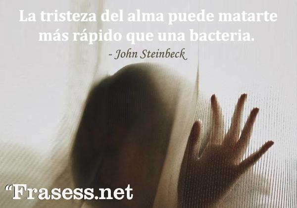 Frases de la vida es dura - La tristeza del alma puede matarte más rápido que una bacteria.