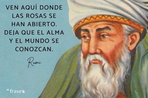 Frases de Rumi