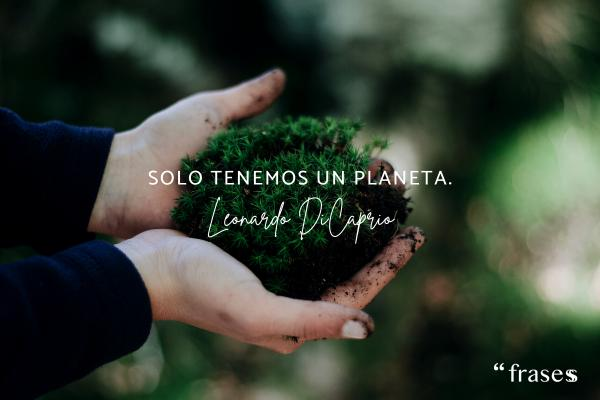 Frases de Leonardo Dicaprio - Solo tenemos un planeta.
