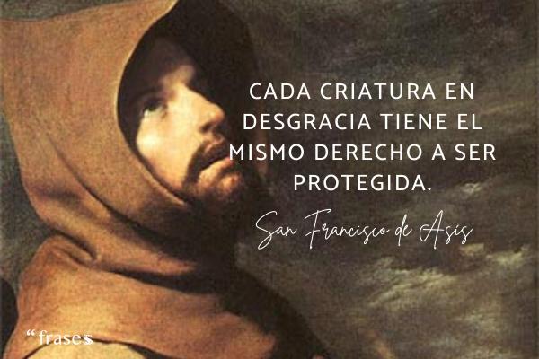 Frases de San Francisco de Asís - Cada criatura en desgracia tiene el mismo derecho a ser protegida.