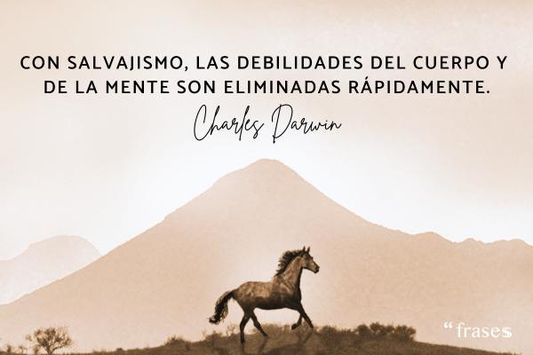Frases de Charles Darwin - Con salvajismo, las debilidades del cuerpo y la mente son eliminadas rápidamente.