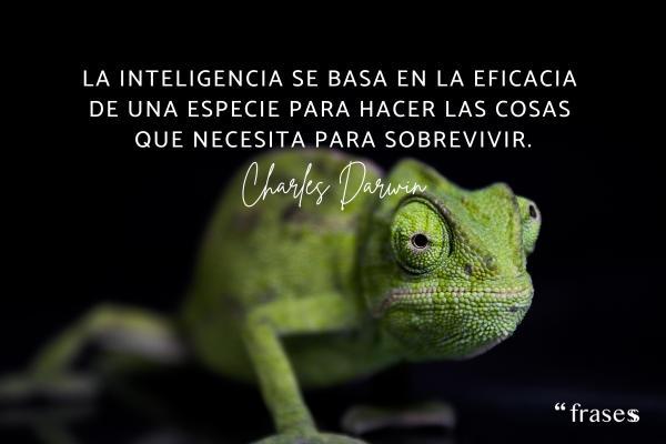 Frases de Charles Darwin - La inteligencia se basa en la eficacia de una especie para hacer las cosas que necesitan para sobrevivir.