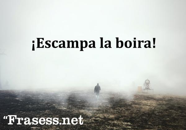 Frases en catalán bonitas y su significado - Escampar la boira. (Escampar la niebla)