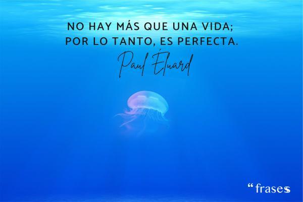 Frases de vivir la vida - No hay más que una vida; por lo tanto, es perfecta.