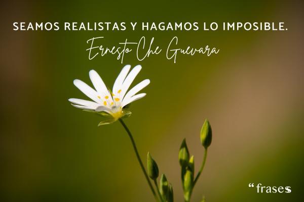 Frases de vivir la vida - Seamos realistas y hagamos lo imposible.
