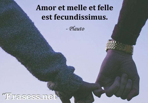 Frases en latín traducidas - Amor et melle et felle est fecundissimus. (El amor es fecundo en miel y en veneno)