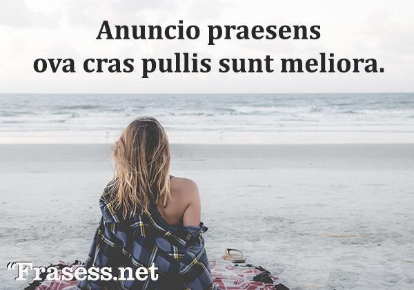 Frases en latín traducidas - Anuncio praesens ova cras pullis sunt meliora. (Pájaro en mano vale más que dos en el monte)
