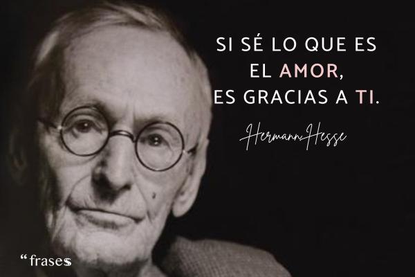 Frases de Hermann Hesse - Si sé lo que es el amor, es gracias a ti.