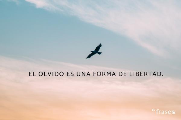 Frases de olvido - El olvido es una forma de libertad.