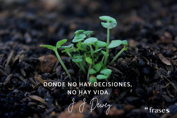Frases de decisiones - Donde no hay decisiones, no hay vida.
