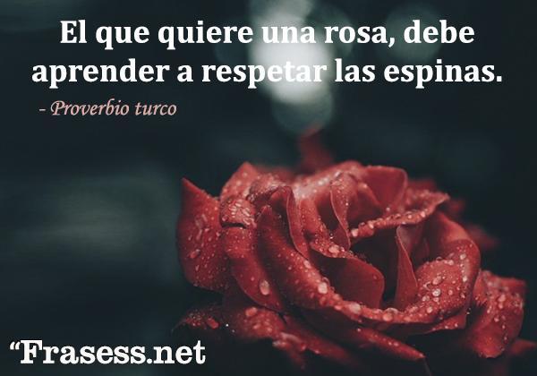 Frases de respeto - El que quiere una rosa debe aprender a respetar las espinas.