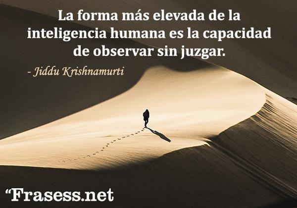 Frases de respeto - La forma más elevada de la inteligencia humana es la capacidad de observar sin juzgar.