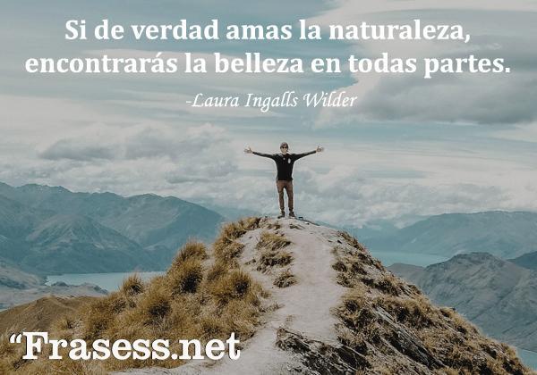 Frases de la naturaleza - Si de verdad amas la naturaleza, encontrarás la belleza en todas partes.