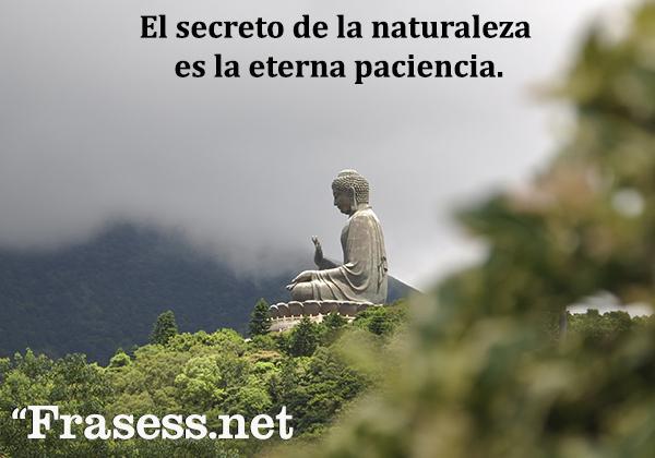 Frases de paciencia - El secreto de la naturaleza es la eterna paciencia.