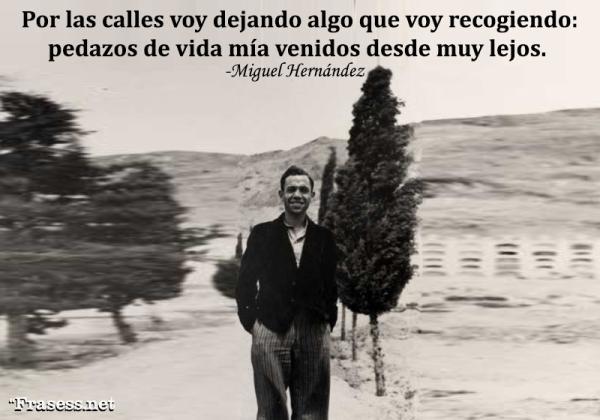 Frases de Miguel Hernández - Por las calles voy dejando algo que voy recogiendo: pedazos de vida mía venidos desde muy lejos.