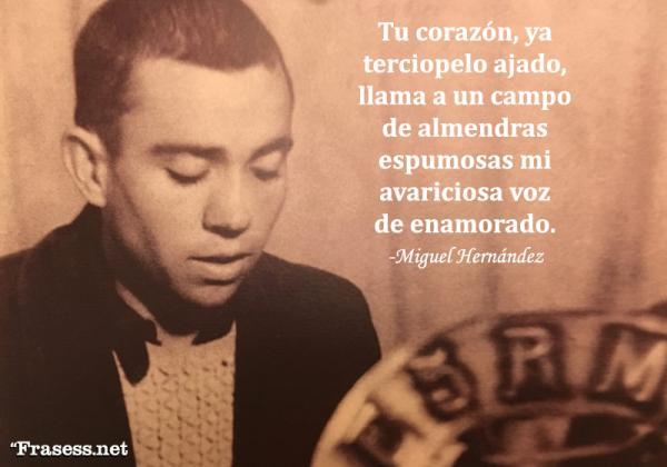 Frases de Miguel Hernández - Tu corazón, ya terciopelo ajado, llama a un campo de almendras espumosas mi avariciosa voz de enamorado.
