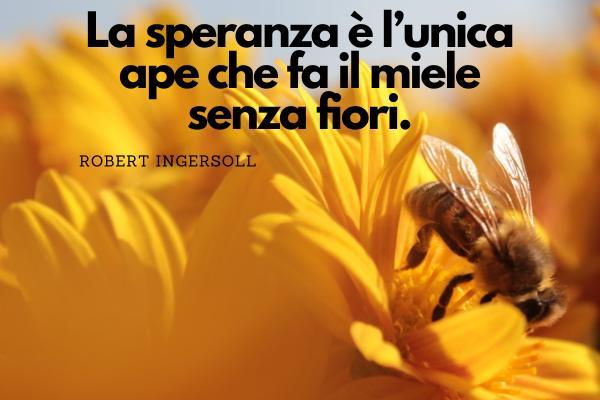 Frasi sulla speraza - La speranza è l'unica ape che fa il miele senza fiori.