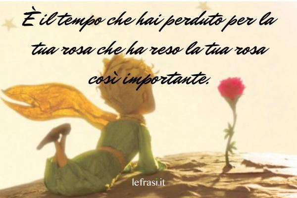 Frasi sul tempo - È il tempo che hai perduto per la tua rosa che ha reso la tua rosa così importante.