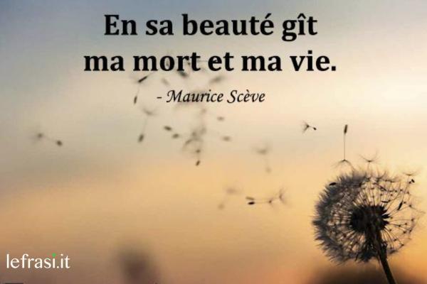 Frasi d'amore in francese - En sa beauté gît ma mort et ma vie.