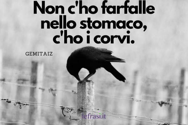 Frasi di Gemitaiz - Non c'ho farfalle nello stomaco, c'ho i corvi.